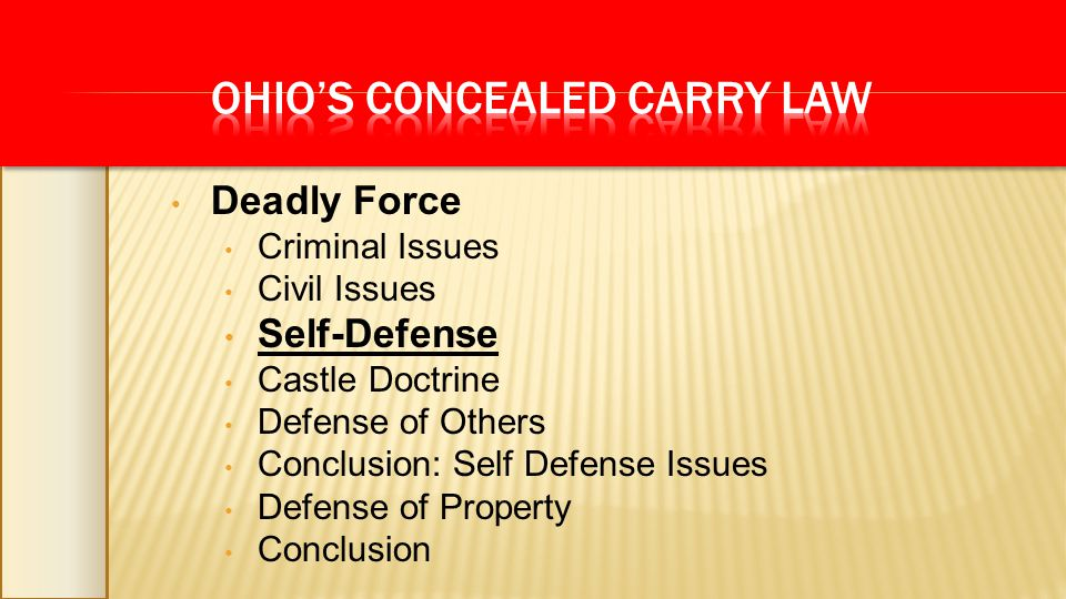 Deadly Force Criminal Issues Civil Issues Self-Defense Castle Doctrine Defense of Others Conclusion: Self Defense Issues Defense of Property Conclusion