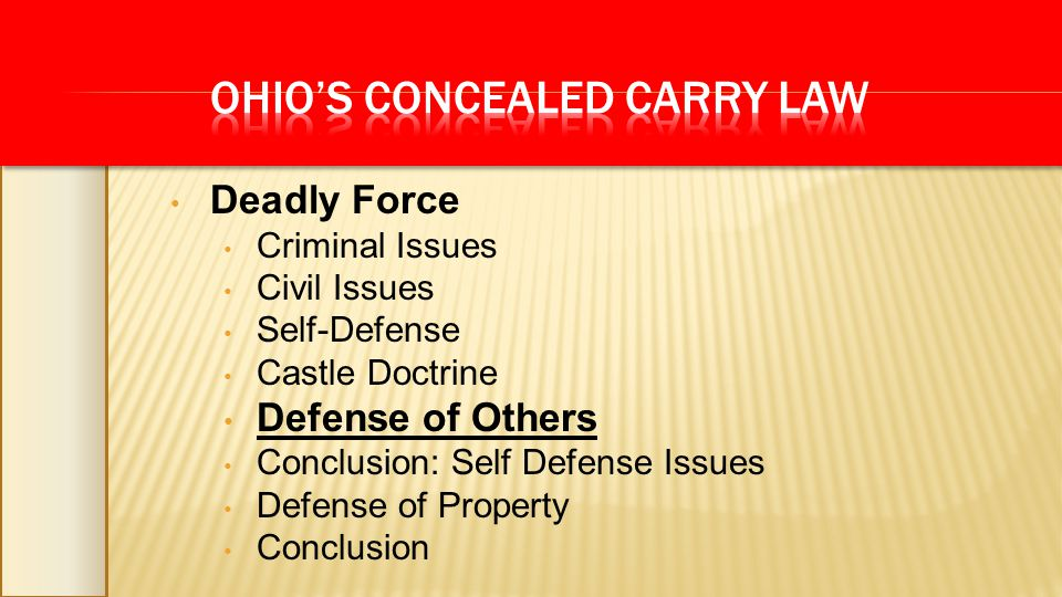 Deadly Force Criminal Issues Civil Issues Self-Defense Castle Doctrine Defense of Others Conclusion: Self Defense Issues Defense of Property Conclusio