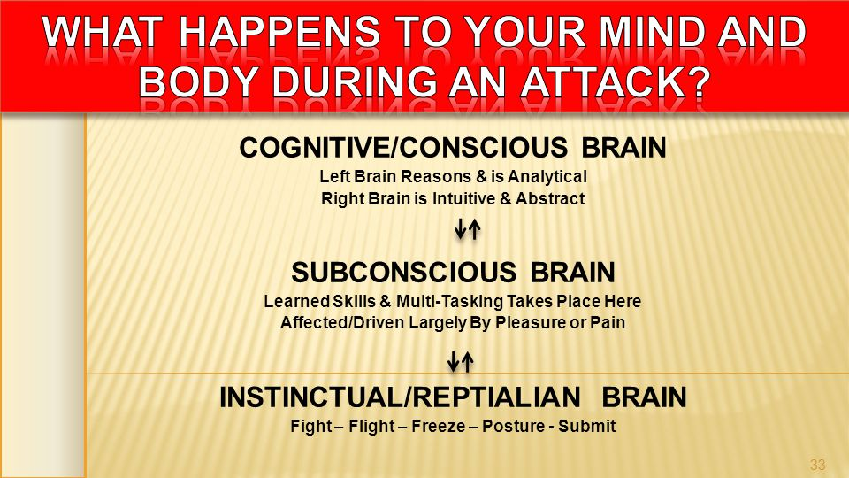 COGNITIVE/CONSCIOUS BRAIN Left Brain Reasons & is Analytical Right Brain is Intuitive & Abstract SUBCONSCIOUS BRAIN Learned Skills & Multi-Tasking Tak