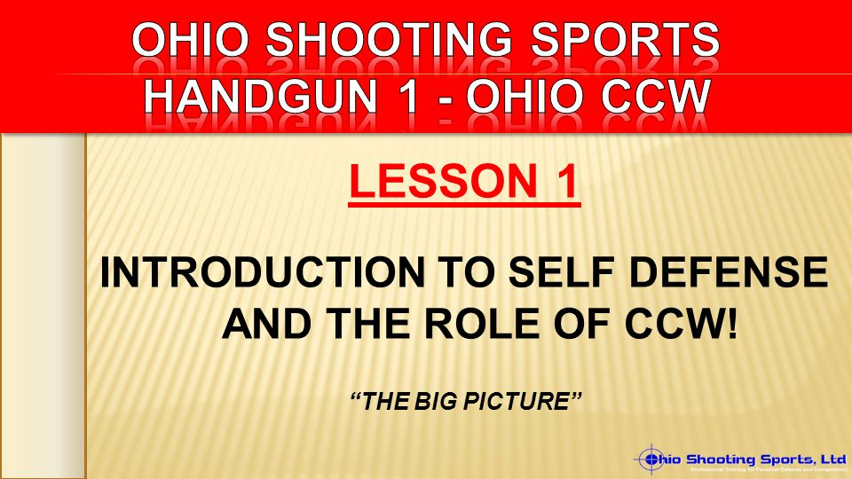 LESSON 1 INTRODUCTION TO SELF DEFENSE AND THE ROLE OF CCW! THE BIG PICTURE