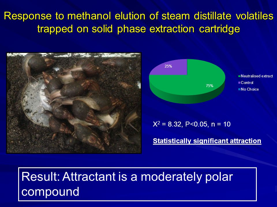 Response to methanol elution of steam distillate volatiles trapped on solid phase extraction cartridge X 2 = 8.32, P<0.05, n = 10 Statistically signif