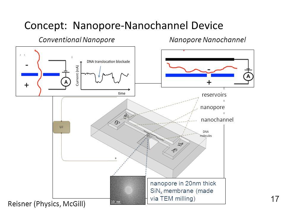 reservoirs nanopore nanochannel nanopore in 20nm thick SiN x membrane (made via TEM milling) reservoirs nanopore nanochannel nanopore in 20nm thick Si
