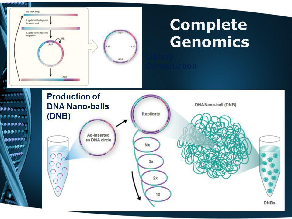 Complete Genomics Library Construction Production of DNA Nano-balls (DNB)