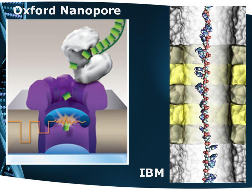 Oxford Nanopore IBM