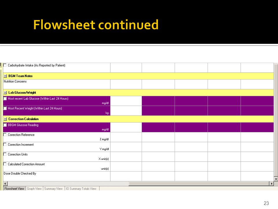Flowsheet ( Eclipsys electronic medical record) 22