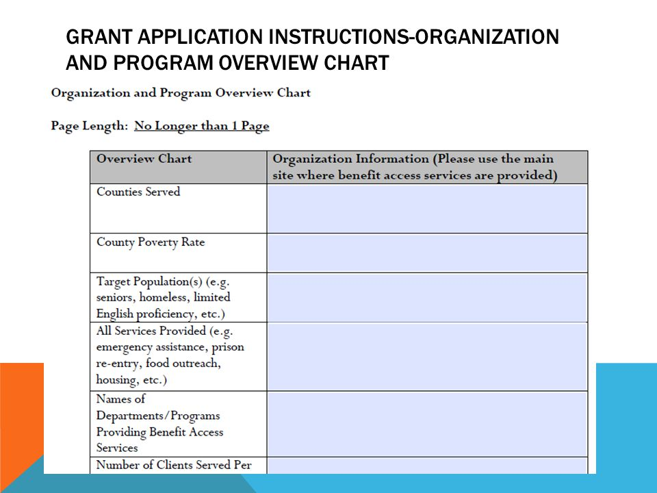GRANT APPLICATION INSTRUCTIONS-ORGANIZATION AND PROGRAM OVERVIEW CHART