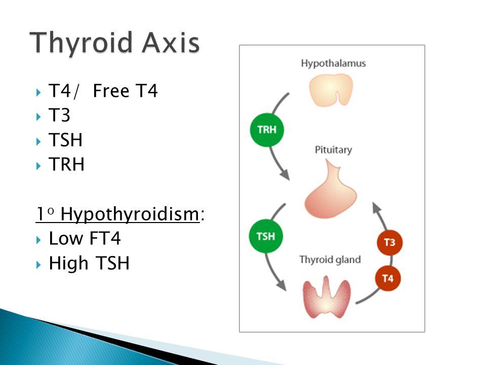 T4/ Free T4 T3 TSH TRH 1 o Hypothyroidism: Low FT4 High TSH