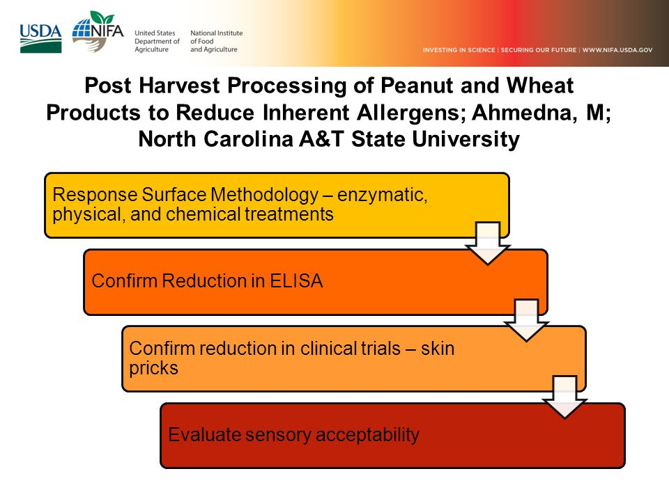 Post Harvest Processing of Peanut and Wheat Products to Reduce Inherent Allergens; Ahmedna, M; North Carolina A&T State University Response Surface Methodology – enzymatic, physical, and chemical treatments Confirm Reduction in ELISA Confirm reduction in clinical trials – skin pricks Evaluate sensory acceptability