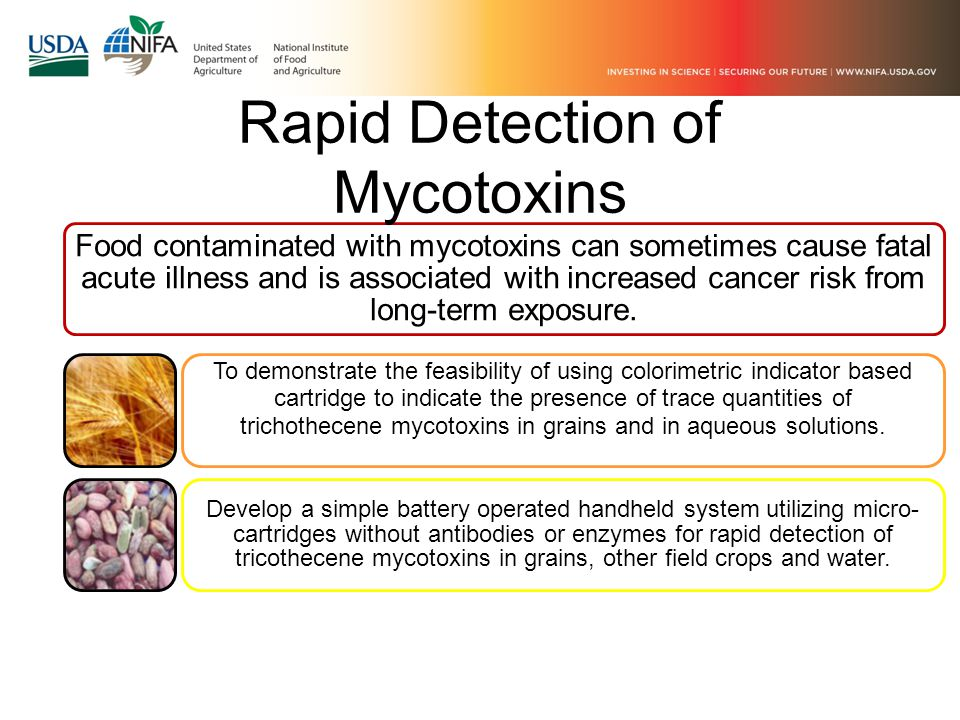 Food contaminated with mycotoxins can sometimes cause fatal acute illness and is associated with increased cancer risk from long-term exposure.