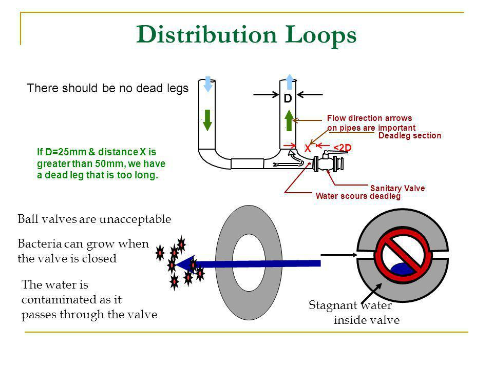 Distribution Loops There should be no dead legs Stagnant water inside valve Ball valves are unacceptable Bacteria can grow when the valve is closed Th