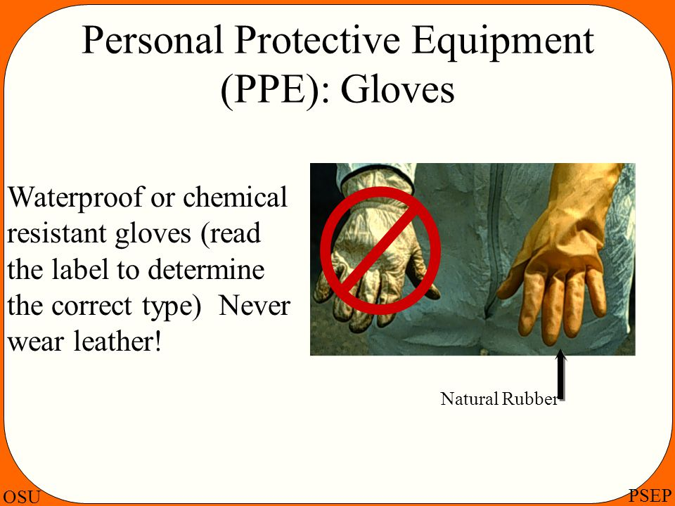 OSU PSEP Personal Protective Equipment (PPE): Gloves Waterproof or chemical resistant gloves (read the label to determine the correct type) Never wear