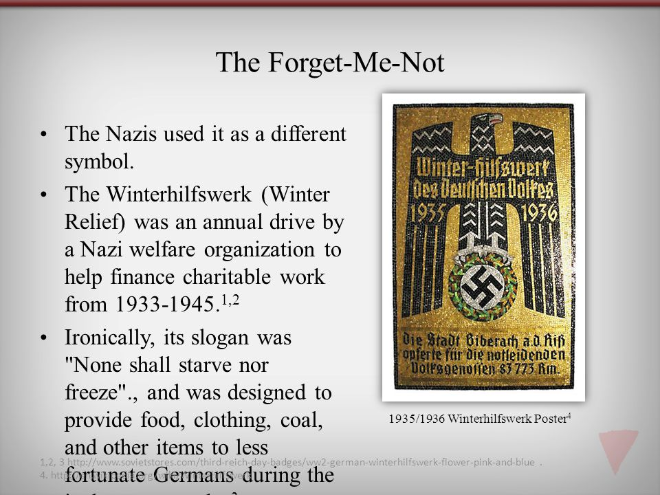 The Forget-Me-Not The Nazis used it as a different symbol.
