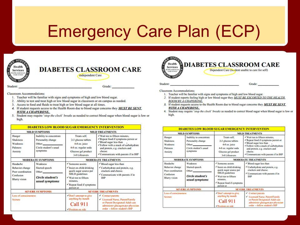 Emergency Care Plan (ECP)