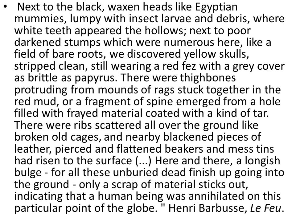 Next to the black, waxen heads like Egyptian mummies, lumpy with insect larvae and debris, where white teeth appeared the hollows; next to poor darken