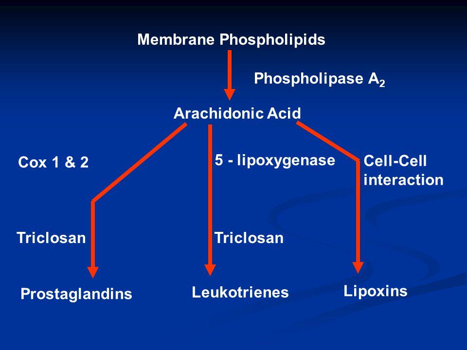 Membrane Phospholipids Phospholipase A 2 Arachidonic Acid Cox 1 & 2 5 - lipoxygenase Cell-Cell interaction Triclosan Prostaglandins Leukotrienes Lipox