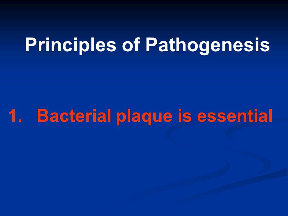 Principles of Pathogenesis 1.Bacterial plaque is essential