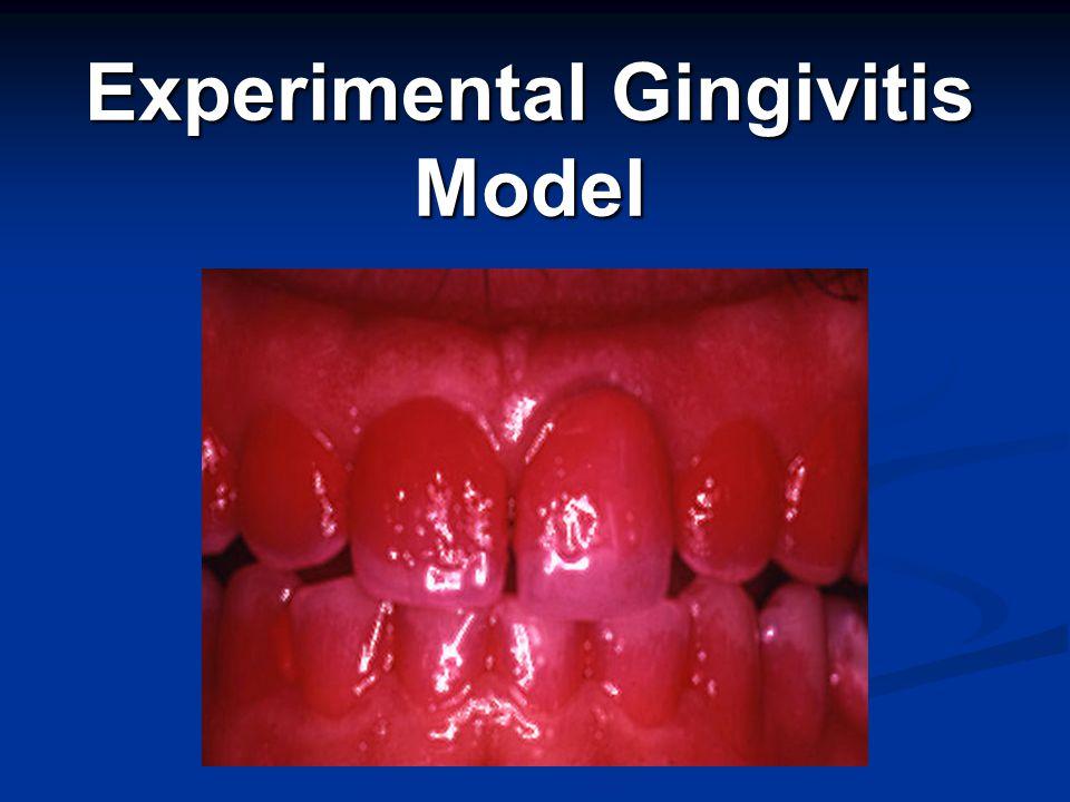 Experimental Gingivitis Model