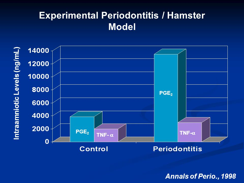 Intraamniotic Levels (ng/mL) Experimental Periodontitis / Hamster Model Annals of Perio., 1998 PGE 2 TNF-