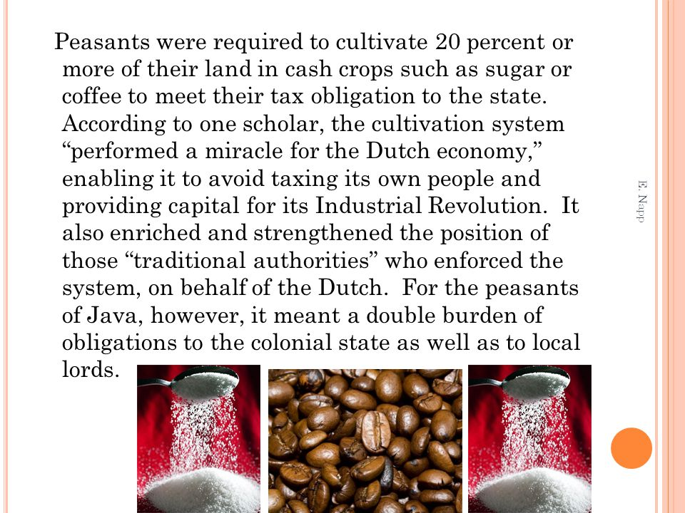 Peasants were required to cultivate 20 percent or more of their land in cash crops such as sugar or coffee to meet their tax obligation to the state.