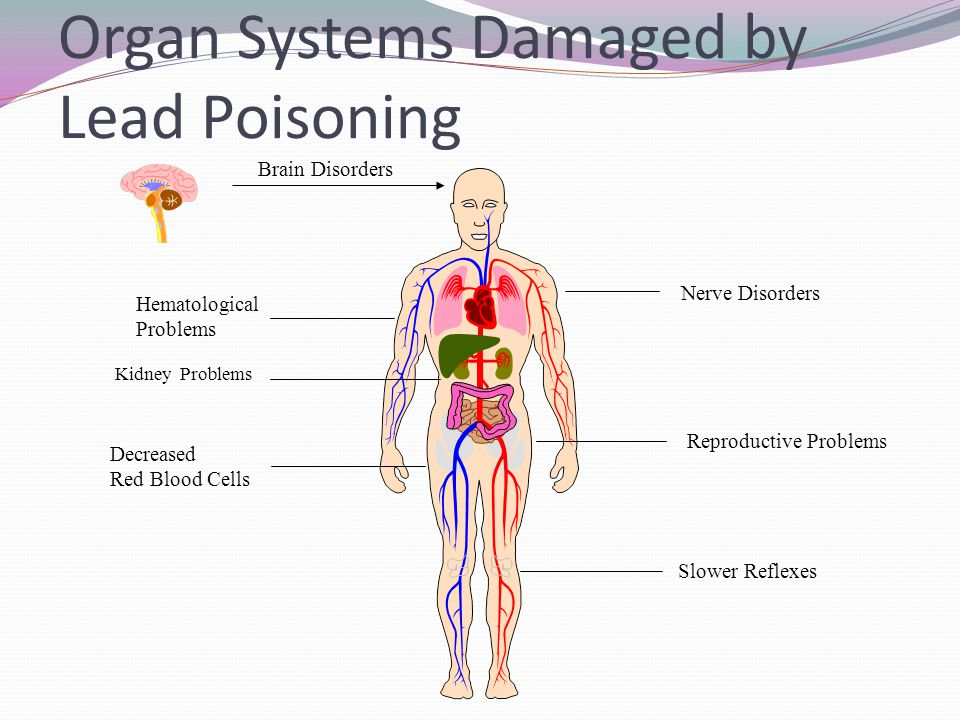 Organ Systems Damaged by Lead Poisoning Brain Disorders Hematological Problems Nerve Disorders Reproductive Problems Slower Reflexes Decreased Red Blo