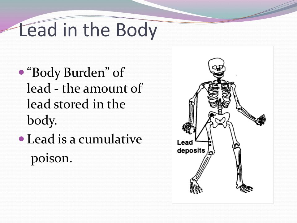 Lead in the Body Body Burden of lead - the amount of lead stored in the body. Lead is a cumulative poison.
