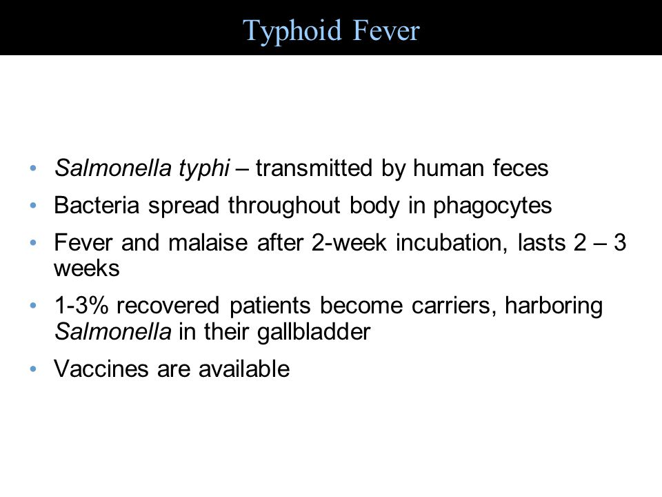 Salmonella typhi – transmitted by human feces Bacteria spread throughout body in phagocytes Fever and malaise after 2-week incubation, lasts 2 – 3 wee