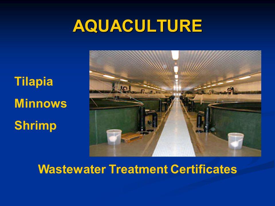 AQUACULTURE Tilapia Minnows Shrimp Wastewater Treatment Certificates