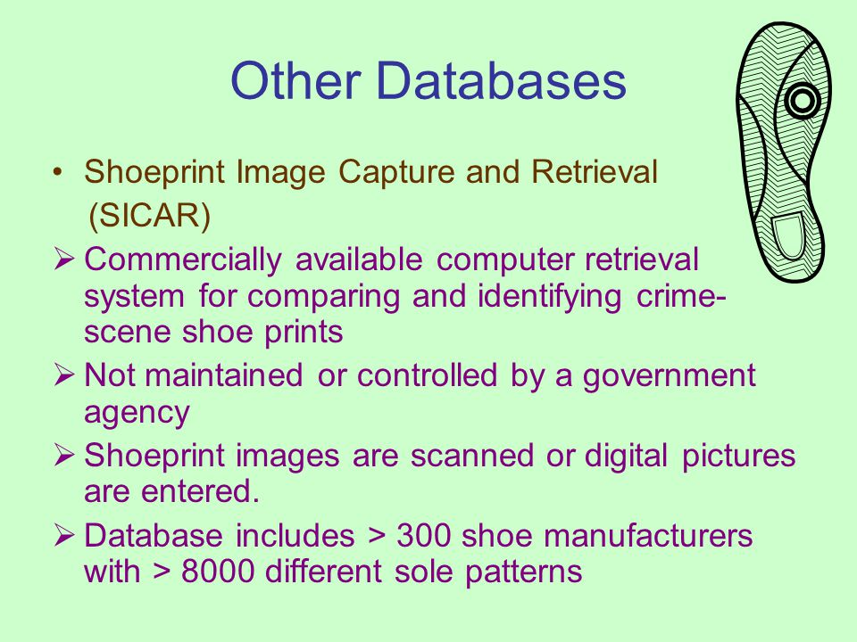 Other Databases Shoeprint Image Capture and Retrieval (SICAR) Commercially available computer retrieval system for comparing and identifying crime- scene shoe prints Not maintained or controlled by a government agency Shoeprint images are scanned or digital pictures are entered.