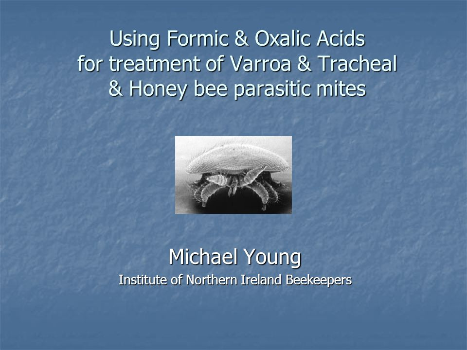 Using Formic & Oxalic Acids for treatment of Varroa & Tracheal & Honey bee parasitic mites Michael Young Institute of Northern Ireland Beekeepers