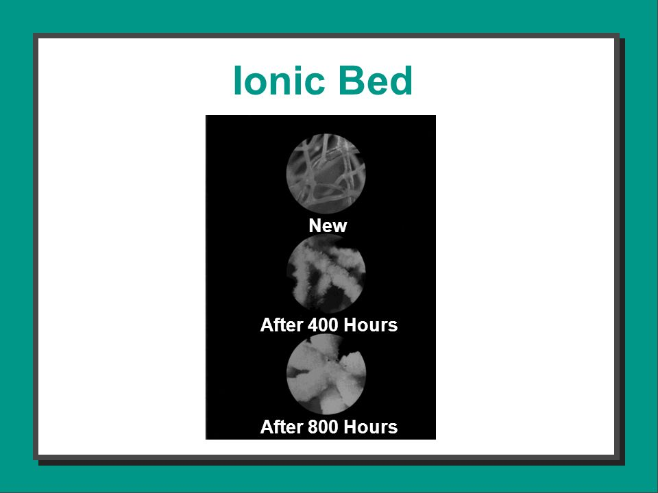 New After 400 Hours After 800 Hours Ionic Bed