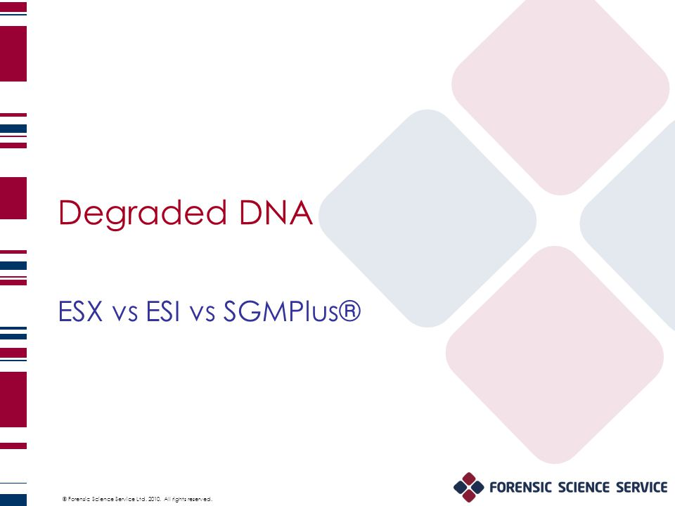 © Forensic Science Service Ltd. 2010. All rights reserved. Degraded DNA ESX vs ESI vs SGMPlus®