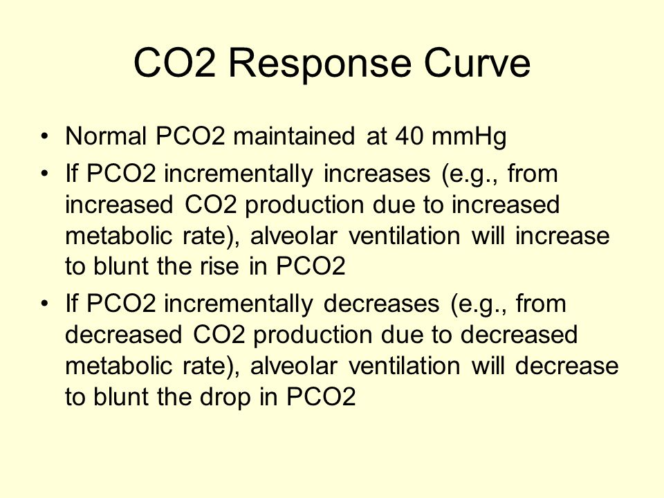 CO2 Response Curve Normal PCO2 maintained at 40 mmHg If PCO2 incrementally increases (e.g., from increased CO2 production due to increased metabolic r