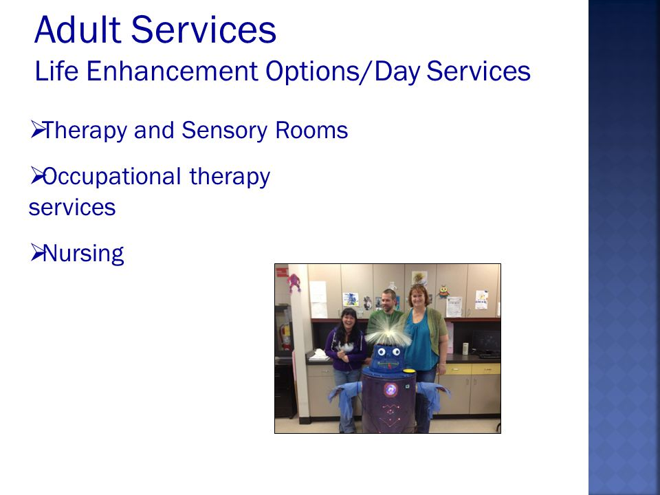 Therapy and Sensory Rooms Occupational therapy services Nursing Adult Services Life Enhancement Options/Day Services