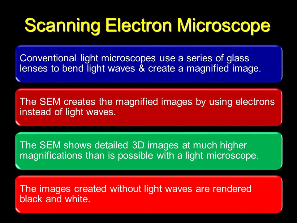 Physical Pharmacy 215 Scanning Electron Microscope
