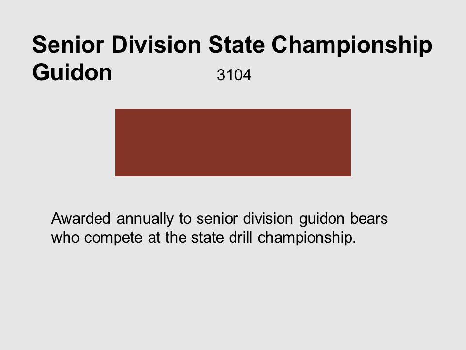 Senior Division State Championship Guidon 3104 Awarded annually to senior division guidon bears who compete at the state drill championship.