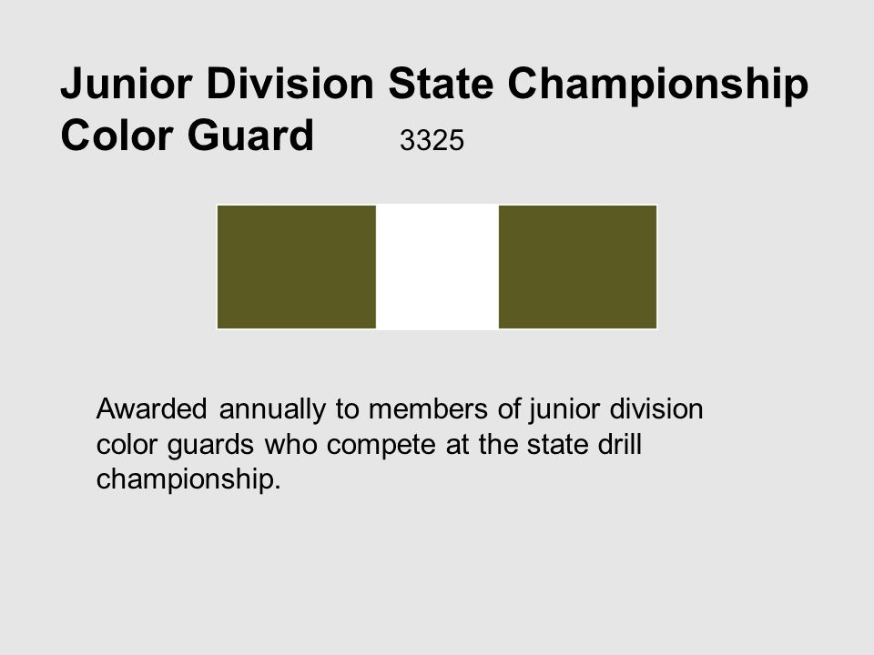Junior Division State Championship Color Guard 3325 Awarded annually to members of junior division color guards who compete at the state drill championship.