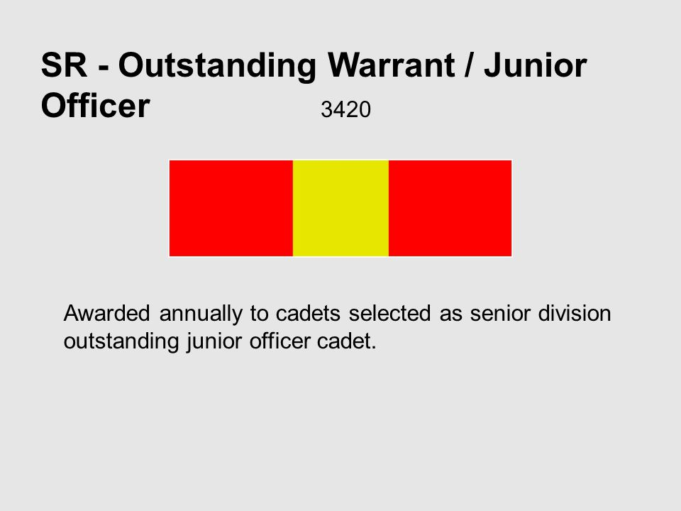 SR - Outstanding Warrant / Junior Officer 3420 Awarded annually to cadets selected as senior division outstanding junior officer cadet.