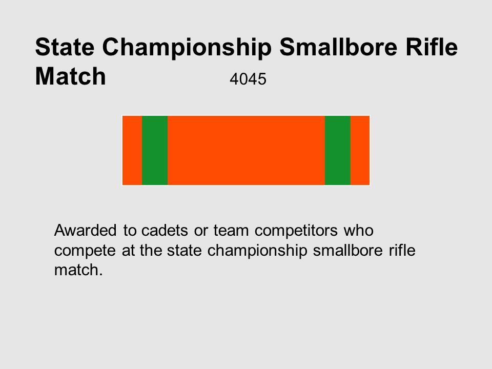 State Championship Smallbore Rifle Match 4045 Awarded to cadets or team competitors who compete at the state championship smallbore rifle match.