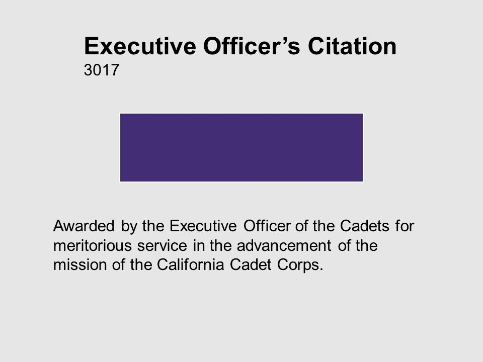 Executive Officers Citation 3017 Awarded by the Executive Officer of the Cadets for meritorious service in the advancement of the mission of the California Cadet Corps.