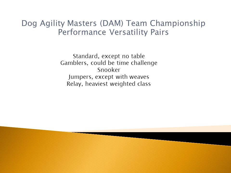 Dog Agility Masters (DAM) Team Championship Performance Versatility Pairs Standard, except no table Gamblers, could be time challenge Snooker Jumpers, except with weaves Relay, heaviest weighted class