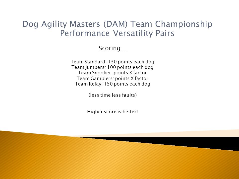 Dog Agility Masters (DAM) Team Championship Performance Versatility Pairs Scoring… Team Standard: 130 points each dog Team Jumpers: 100 points each dog Team Snooker: points X factor Team Gamblers: points X factor Team Relay: 150 points each dog (less time less faults) Higher score is better!