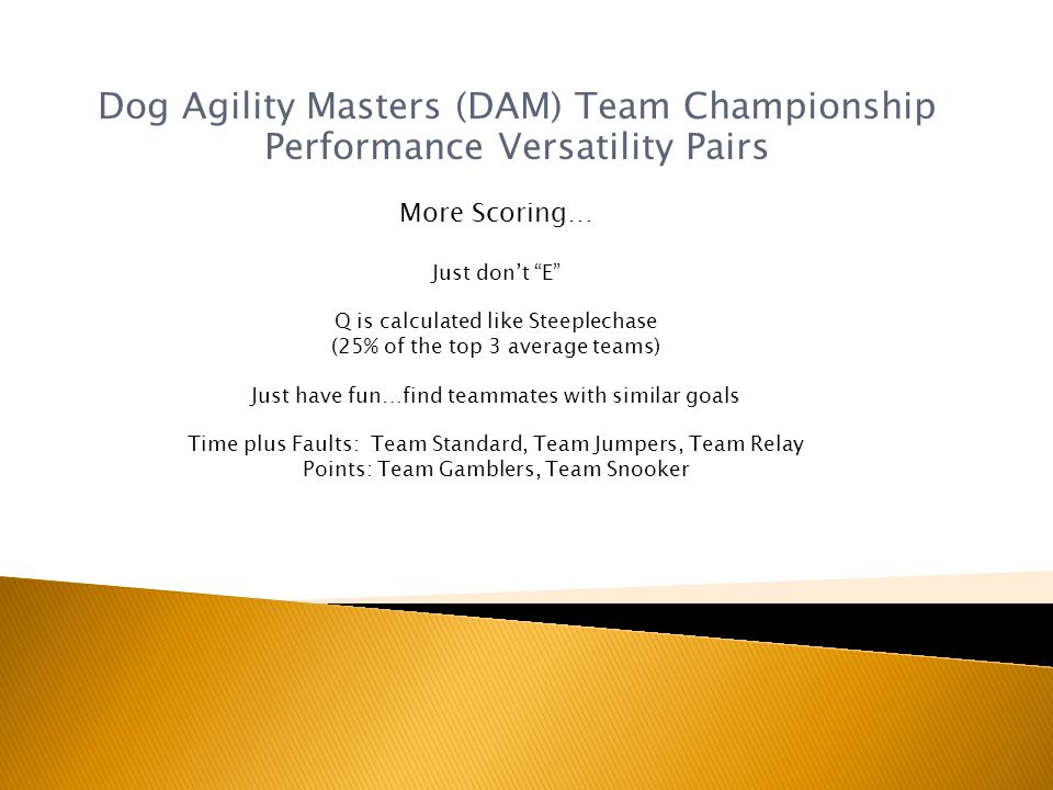 Dog Agility Masters (DAM) Team Championship Performance Versatility Pairs More Scoring… Just dont E Q is calculated like Steeplechase (25% of the top 3 average teams) Just have fun…find teammates with similar goals Time plus Faults: Team Standard, Team Jumpers, Team Relay Points: Team Gamblers, Team Snooker
