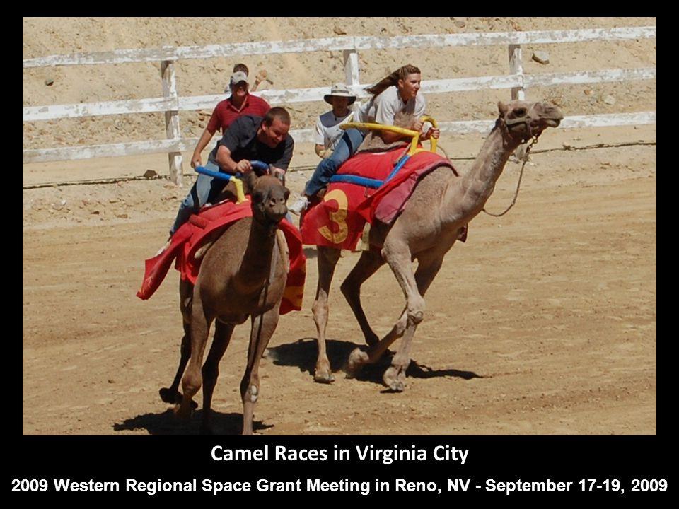 Camel Races in Virginia City 2009 Western Regional Space Grant Meeting in Reno, NV - September 17-19, 2009
