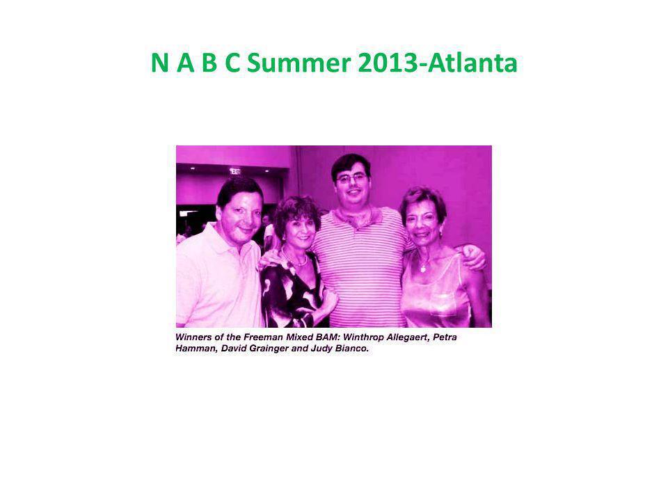 N A B C Summer 2013-Atlanta