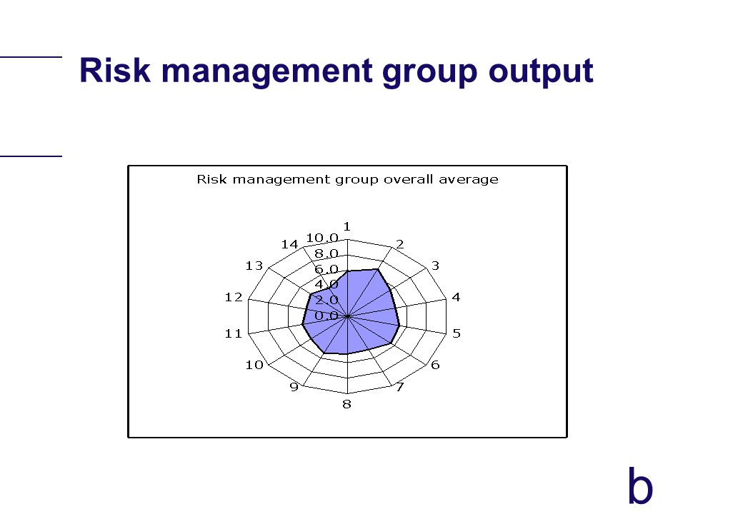 b Risk management group output