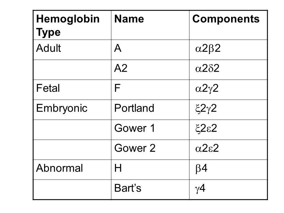 Hemoglobin Type NameComponents AdultA 2 2 A2 2 2 FetalF 2 2 EmbryonicPortland 2 2 Gower 1 2 2 Gower 2 2 2 AbnormalH 4 Barts 4