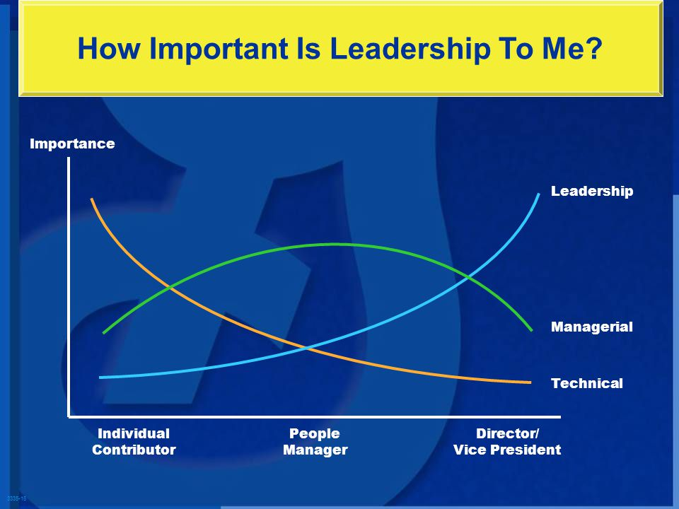 3335-16 How Important Is Leadership To Me? Importance Individual Contributor People Manager Director/ Vice President Leadership Managerial Technical
