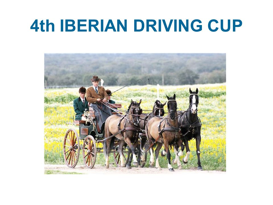 4th IBERIAN DRIVING CUP