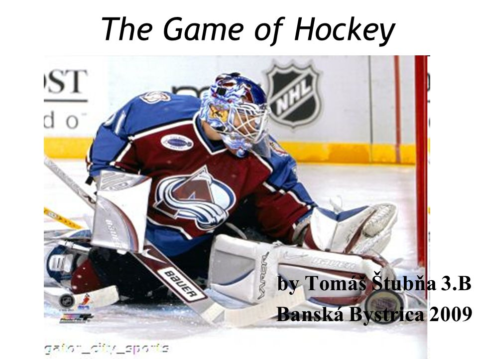 Introduction I have chosen this topic, because I am obsessed by ice hockey from my childhood.