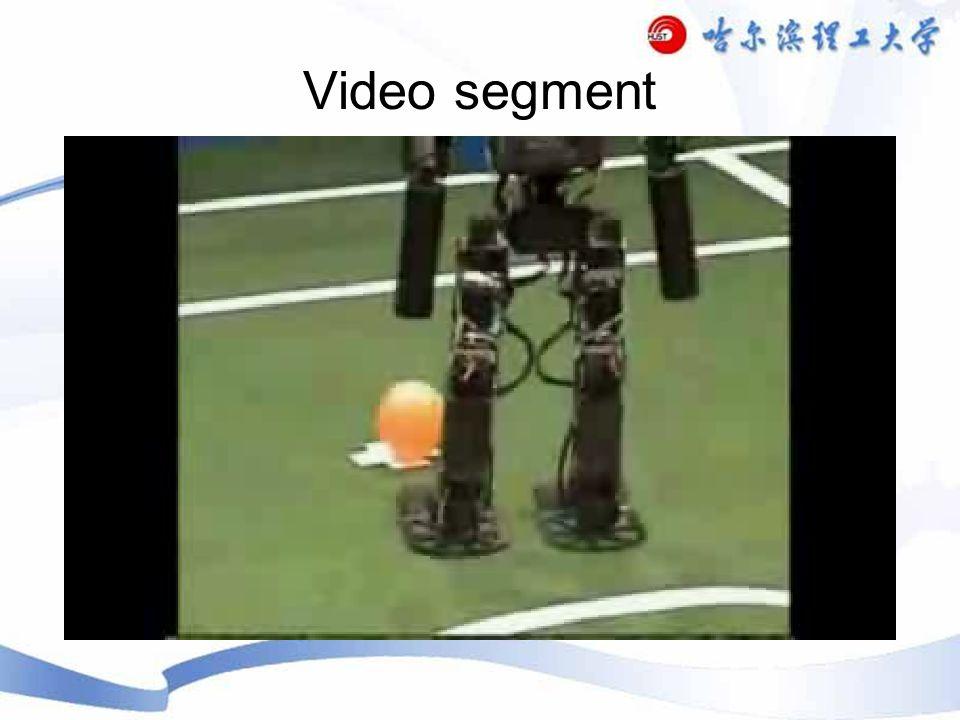 Video segment